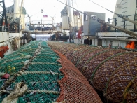 Brief results of the Sea of Okhotsk pollock fishery in season A 2020
