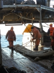 TINRO observers report on results of Sea of Okhotsk pollock fishery monitoring